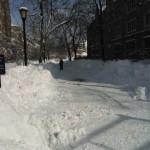 Tuna sněhu